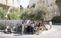 The Hanoun's camp on the corner opposite their house